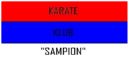 karatesampion